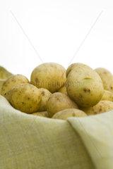 Fresh potatoes in basket