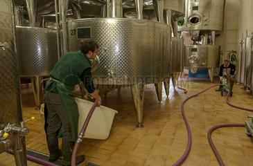 Guebwiller  Frankreich  Stahltanks in der Weinkelterei Domaines Schlumberger