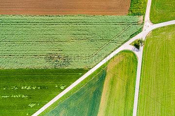 Germany  Baden-Wuerttemberg  Schurwald  Aerial view of fields in spring