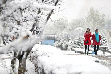 CHINA-GANSU-PINGLIANG-SNOWFALL (CN)