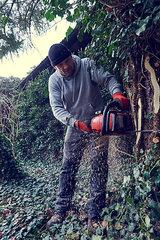 Mann faellt mit einer Motorsaege einen Baum