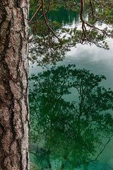 Reflexionen im Wasser