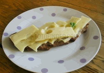 Kaesebrot auf Teller