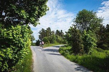 Radfahrer fahren geradeaus an einer Kreuzung vorbei
