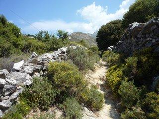 Serie Griechenland Paros Byzanthinischer Weg 2
