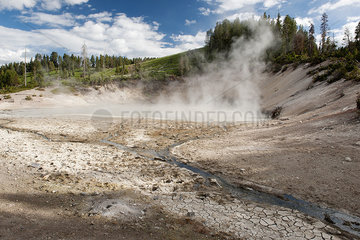 Hot spring in Yellowstone National Park  Wyoming  USA