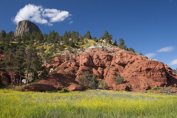 Red rock formation near Devils Tower in Wyoming  USA
