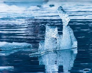 Schwimmendes Eis  Hornsund  Spitzbergen