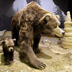 MK_Iserlohn_Museum_04.tif