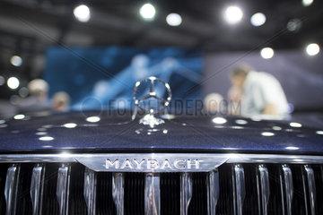 Daimler general meeting