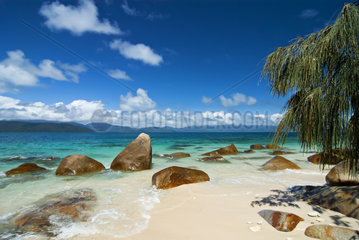 Tropical beach with rocks  tree and clear water