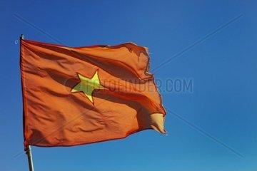 Eine vietnamesische Fahne im Wind  Vietnam