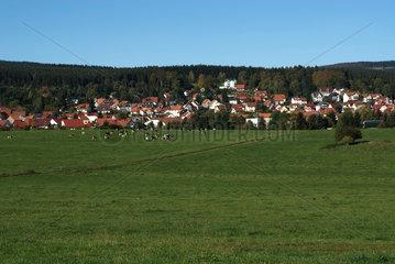 Tambach-Dietharz  Deutschland  eine Kleinstadt am Thueringer Wald