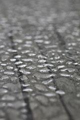 Berlin  Deutschland  Regentropfen auf einer Tischplatte