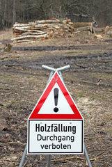 Neuenhagen  Deutschland  Schild Holzfaellung Durchgang verboten
