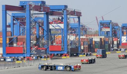 Container-Terminal Altenwerder