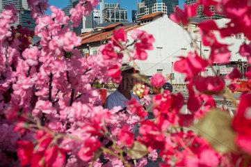 Republik Singapur  Blumenschmuck in Chinatown