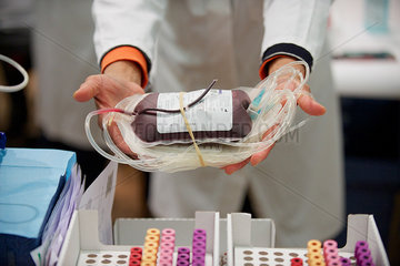 Healthcare worker holding out blood bag  cropped