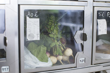 Food locker containing turnips in self-serve grocery