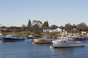 Fishing boats moored in marina near small fishing village in Maine  USA