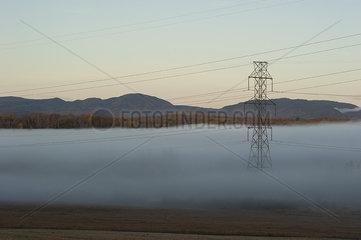 Power lines running through foggy rural landscape