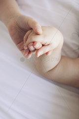 Child's hand holding baby's hand