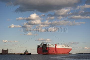Large cargo ship in Boston Harbor  Boston  Massachusetts  USA