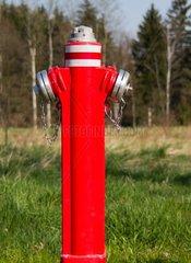 Hydrant in Wiese