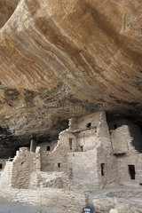Cliff Palace  Mesa Verde National Park  Colorado  USA