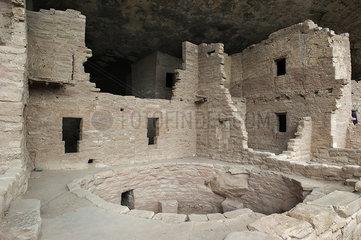 Cliff Palace  Mesa Verde National Park  Colorado  USA