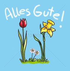 Alles Gute Blumen