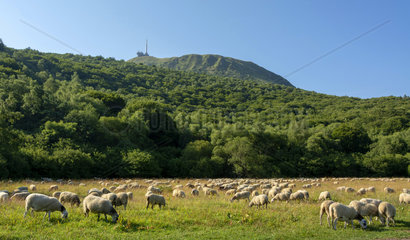 FRANCE - AUVERGNE VOLCANOES - UNESCO HERITAGE
