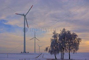 Winterlandschaft mit Windturbinen