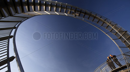 DU_Tiger and Turtle_06.tif
