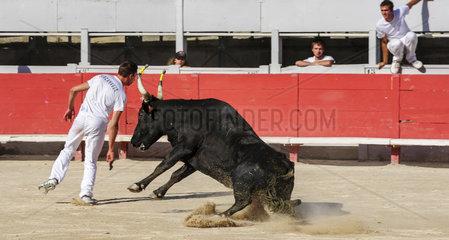 Bullfight in Arles  France