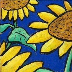 Pflanze Sonnenblume