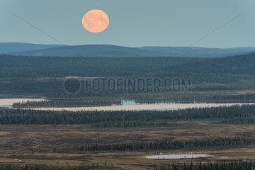 Mondaufgang  Muddus  Lappland
