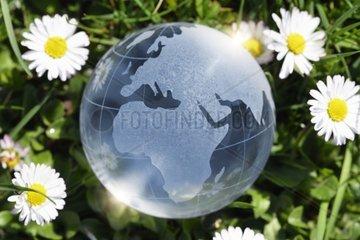 Weltkugel im Gras  Nachhaltigkeit