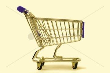 Einkaufswagen  Shopping