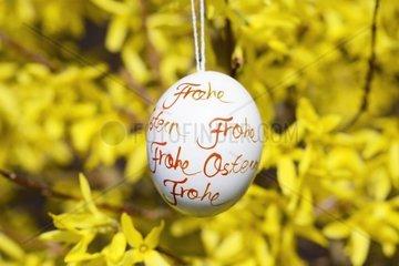 Osterei mit Aufschrift Frohe Ostern