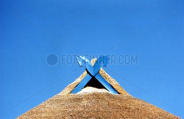 Dach eines Reedhaus