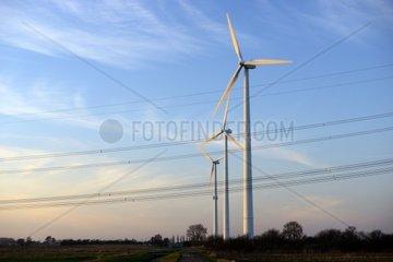 Windraeder in Hamburg  Deutschland