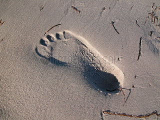 footprint in the sand of a beach