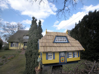 lustiges Vogelhaeuschen Zingst-Darss Germany