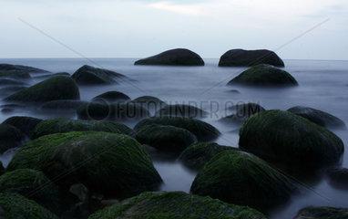 D-Mecklenburg-Vorpommern: Ruegen  Nationalpark Jasmund  Felsen im Wasser