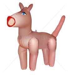 Hund als Sexspielzeug