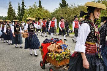 Erntedankumzug 2013 in Kirchwerder  Vier- und Marschlande  Hamburg  Deutschland