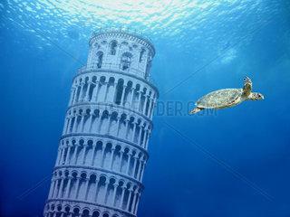 Zukunft  Erhoehung des Meeresspiegels  Pisa