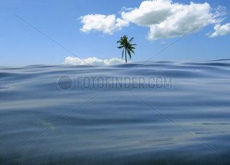 Zukunft  Erhoehung des Meeresspiegels  Malediven