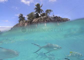 Seychellen  St. Pierre bei Praslin